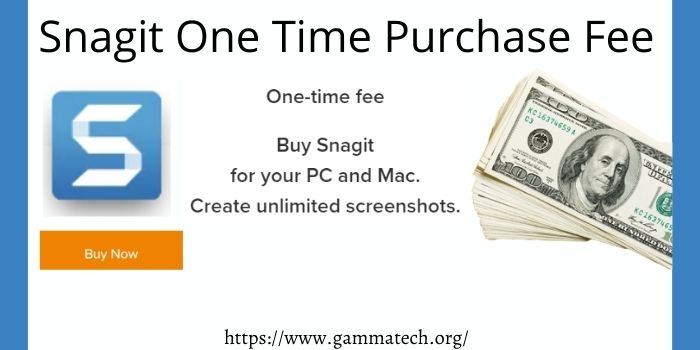Snagit One Time Purchase Fee